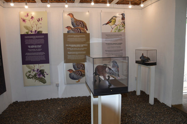 Tanzania, l'inaugurazione della sede estera del Museo delle Scienze di Trento