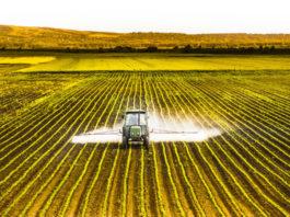 """Fusione Bayer-Monsanto: """"Operazione finanziaria sulle spalle degli agricoltori"""""""