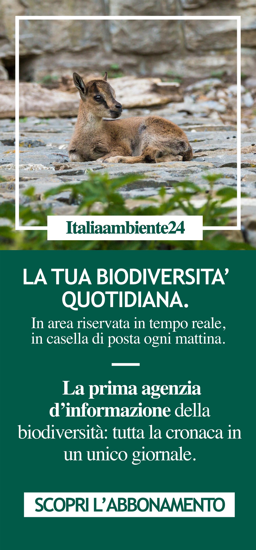 La tua biodiversità quotidiana