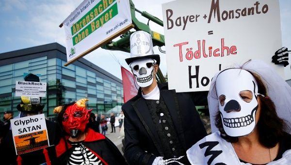 Attivisti tedeschi protestano contro l'unione delle due multinazionali Bayer e Monsanto