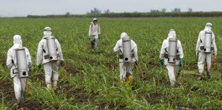 Fusione Bayer Monsanto