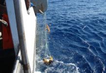 Rete da pesca che ha intrappolato una tartaruga marina e una stella marina