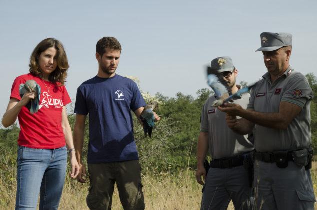 Carabinieri Forestali, Lipu e Ornis Italica durante il rilascio