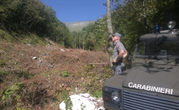 Il taglio illegale è avvenuto in pieno Parco dei Sibillini, in una zona di Rete Natura 2000