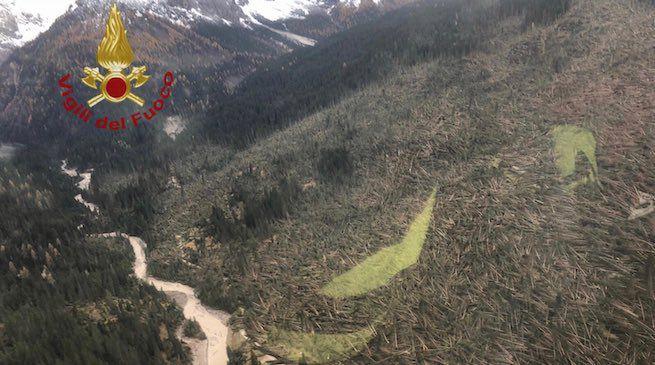 Alberi abbattuti in Veneto dal maltempo nella giornata del 30 ottobre