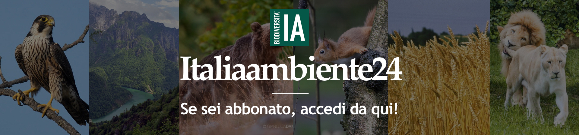 Accedi a Italiaambiente24