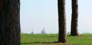 Parco del Pineto, parco urbano di Roma