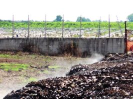 """La contaminazione nella """"Terra dei Fuochi"""""""