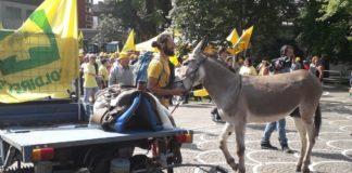 Manifestazione Coldiretti, immagine d'archivio
