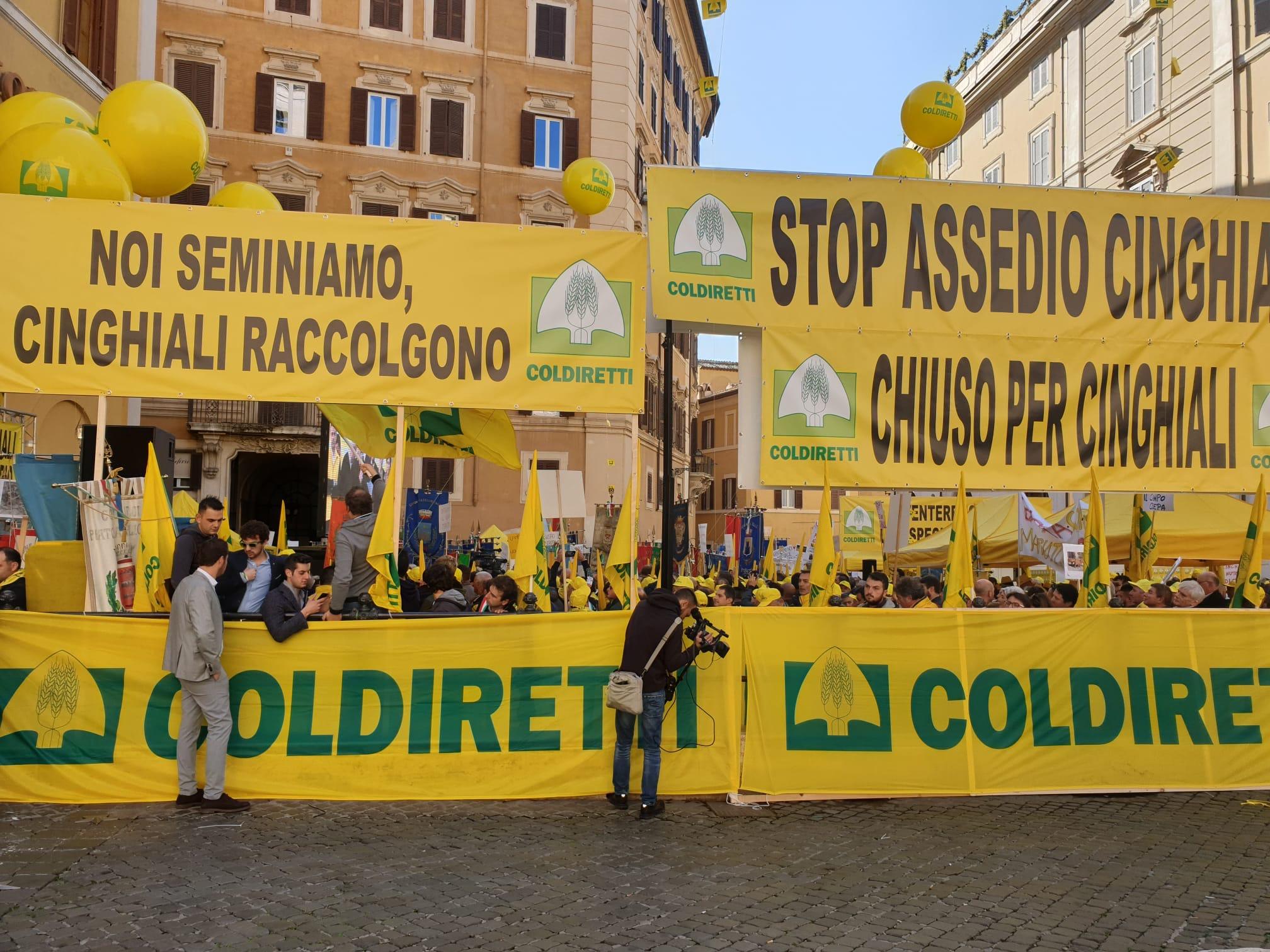 """Montecitorio, blitz contro """"invasione dei cinghiali"""": in Appennino 1 su 5 abitanti"""