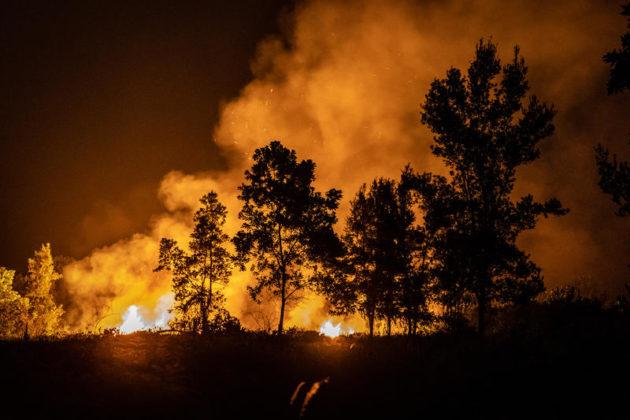 Fuochi della piantagione e della foresta nel sub-distretto Jekan Raya, città di Palangkaraya, Kalimantan centrale, Indonesia. Il governo indonesiano ha dichiarato un'emergenza statale in sei province di Sumatra e Kalimantan man mano che gli incendi boschivi in Indonesia aumentano.