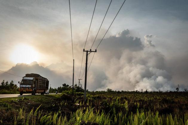 Il fumo aumenta durante gli incendi nelle foreste e nelle piantagioni di Tanjung Taruna, sotto-distretto Jabiren Raya, distretto di Pulang Pisau, Kalimantan centrale, Indonesia. Il governo indonesiano ha dichiarato un'emergenza statale in sei province di Sumatra e Kalimantan mentre gli incendi boschivi in Indonesia aumentano.