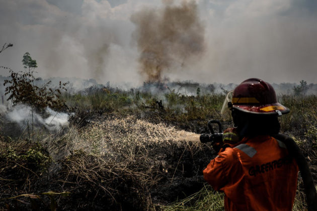 I membri del team di Greenpeace Indonesia Forest Fire Prevention (FFP) estinguono gli incendi nella piantagione e nella foresta nel sub-distretto Jekan Raya, città di Palangkaraya, Kalimantan centrale. Il governo indonesiano ha dichiarato un'emergenza statale in sei province di Sumatra e Kalimantan man mano che gli incendi boschivi in Indonesia aumentano.