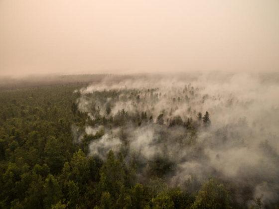 Immagine dal drone che mostra il fumo che sale dalla foresta di torba in fiamme all'interno della concessione di palma da olio di Globalindo Agung Lestari a Mantangai, distretto di Kapuas, Kalimantan centrale, parte del gruppo della società malese Genting Plantations Berhad.