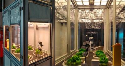Innovazione, gli OLED illumineranno l'agricoltura del futuro